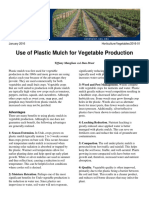 Use of Plastic Mulch for Vegetable Production