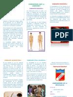 TRIPTICO DIMENSIONES DE LA SEXUALIDAD.docx