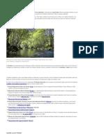 especial-castilla-y-leon.pdf