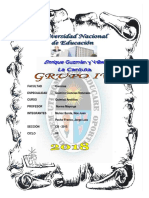 cationes IV informe.docx