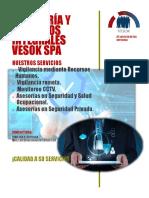 Presentacion Vesok