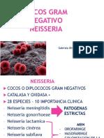 BACTERIOLOGIA AULA 14 - COCOS GRAM NEGATIVO NEISSERIA.pdf