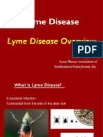 Lyme Overview