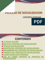 procesodesocializacionautoguardado-100623172841-phpapp01