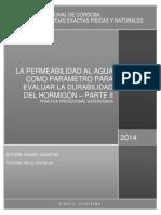PS Ichaso, Agustina.pdf