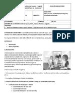 modelo-modulos-agenda_escolar-archivos-0979848001489455870.docx