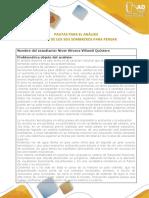 Pautas_fase3_niver villamil quintero .docx