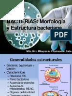Morfologia y estructura bacteriana