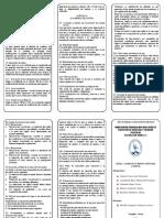 TRIPTICO REDUCCION CAPITAL.docx