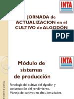 inta-tarrago_fenologia_manejo_cultivo_0.pdf