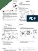 guía estudio invertebrados.docx