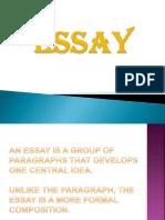 Essay.ppt