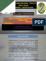 DEFENSA REMO 2019.pptx