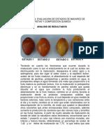 Informe maduracion de frutas.docx