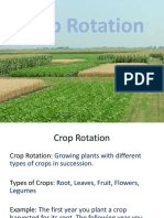 ST11crop Rotation