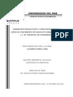 Tesis Elizabeth Pérez Lara.pdf