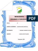 TORCEDURAS  MONOGRAFIA.docx