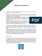SIMBOLOGIA DRUIDA.doc