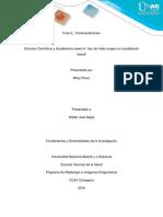 Fase 2_Contextualizacion_Mitsy Perez.docx