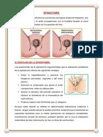 EPISIOTOMIA +.docx