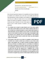 Experimento N°02 - Culque Lezama.docx
