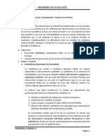 PRÁCTICA Nº 01.docx
