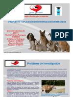 Presentación Final Investigacion de Mercados