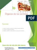 pdf oido