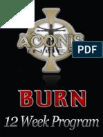 ANIS Burn Workout 2.0