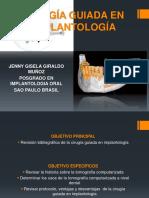 Cirugía Guiada en Implantología Foto 1 Jenny