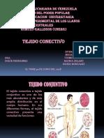 PRESENTACION TEJIDO CONECTIVO