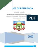 Formato TDR 2019