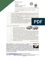 Schopenhauer Stachelschweine.docx