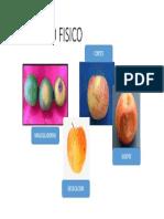 DETERIORO-FISICO.pptx