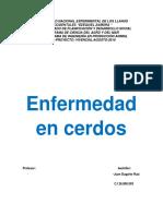 investigacion para trabajo de electiva de cerdo.docx