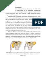 dokumen.tips_pola-penyebaran-infeksi.doc