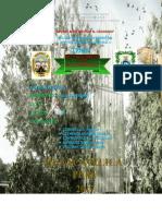 Bioelementos Informe n2 Biología