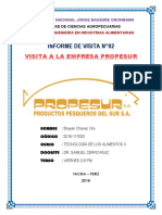 empresa propesur - visita- 1.docx