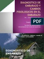 cambiosfisiologicosenelembarazo