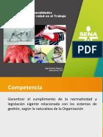 1. Generalidades SGSS Olgas (2)