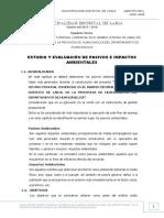 ESTUDIO Y EVALUACIÓN DE PASIVOS E IMPACTOS AMBIENTALES mercado.docx