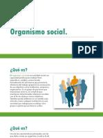 Organismo Social..pptx
