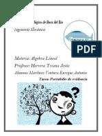 Algebra Lineal PDF