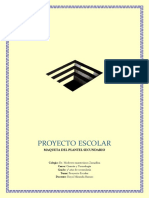 PROYECTO ESCOLAR.docx