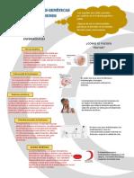 infografia de CTA.docx