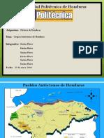 Presentacion Pueblos Autoctonos
