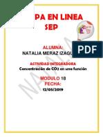 merazizaguirre_Natalia_M18 S3 AI5_ConcentraciondeCO2enunafuncion.docx