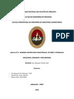 PRÁCTICA N 3 organos Y MAQUINAS.docx