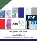 AMV presentation.pdf