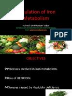 Regulation of Iron Metabolism Ppt